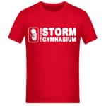 schulshop-shirt-theodor-storm